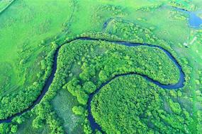 绿色原野茂密树林蓝色河流