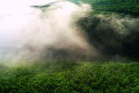 山林晨雾迷漫