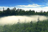 山峦密林云雾风景
