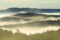 大兴安岭山林云雾迷漫