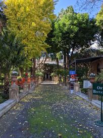 西西里岛私家花园
