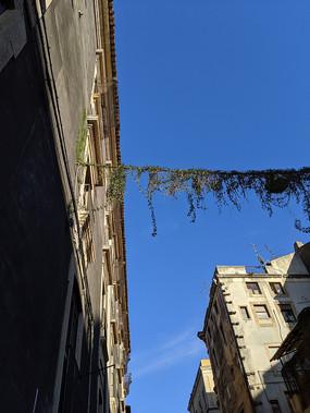 意大利卡塔尼亚古老建筑