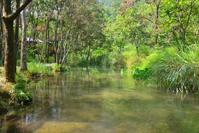荔波小七孔林间清澈的小河