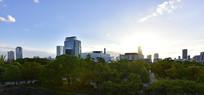 日本大阪城的建筑与绿化