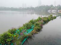 湖中的弧形美丽花坛