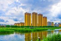万水河对岸多高层建筑与水草