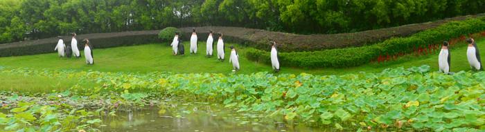 城市路缘花境荷塘和企鹅雕塑