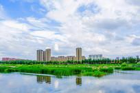 万水河对岸多高层建筑群与水草