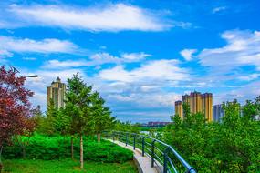 万水河园林绿化与高层建筑群