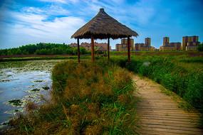 甘肃张掖国家湿地公园