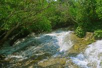 贵州荔波小七孔森林溪流