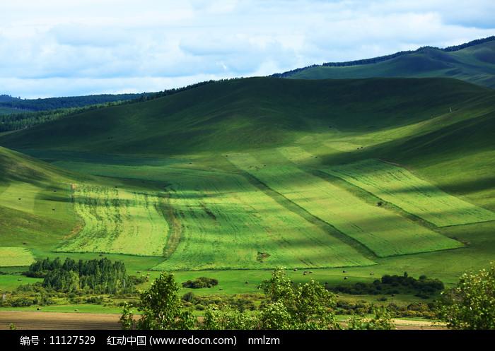 呼伦贝尔垦区田园风光图片