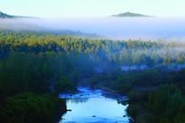 林海树林云雾