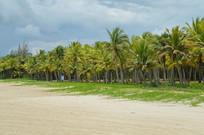 海南海滩沙滩海边椰树图
