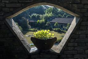 透过窗户往外看江南水乡