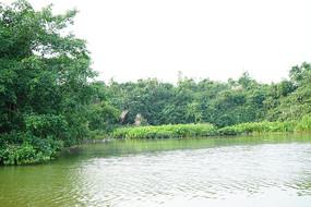 小鸟天堂湖泊