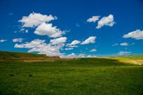 蓝天白云下的大草原