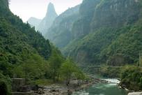 重庆奉节九盘河绿色植被