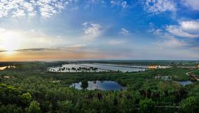 湿地公园的美丽景色