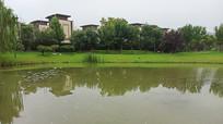 绿地公园景观