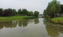 人工湖园林景观