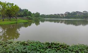 城市公园人文景观