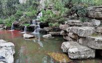公园里的山水小景观