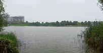 微波湖面风景
