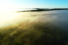 大兴安岭山岭森林晨光