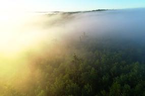 大兴安岭山岭阳光森林