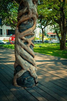 缠绕的大树