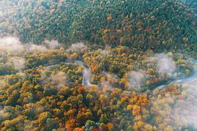 长白山林区密林河湾秋色迷雾