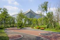 成都桂溪生态公园绿道