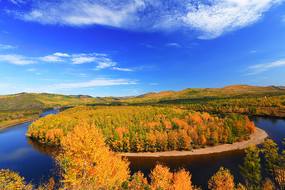 大兴安岭白鹿岛激流河浓郁秋色