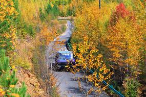 大兴安岭秋季山路