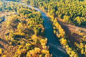 航拍河流树林秋色