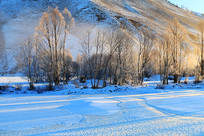 雪地树林晨雾