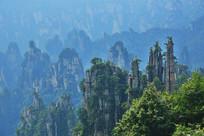 张家界国家森林公园山峰景观