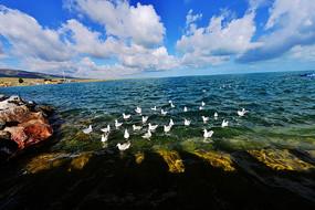 青海湖湖面风光