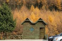 巫山梨子坪林场森林木屋