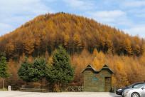 巫山梨子坪林场森林木屋风光
