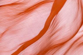 飘动的红丝巾