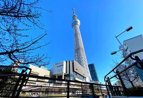 东京晴空塔图片