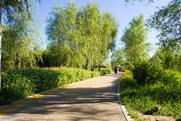 公园景观道