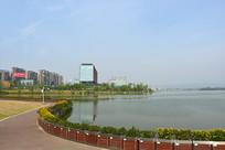 成都兴隆湖湖滨广场花园及绿化