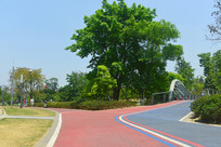 江滩公园健身道-天府绿道