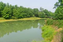 成都西来古镇-临溪河自然风光