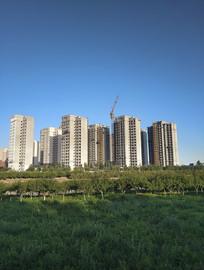 家园绿地楼市