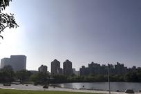 上海郁金香公园白沙滩