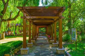 沈阳中山公园木制长廊与树木